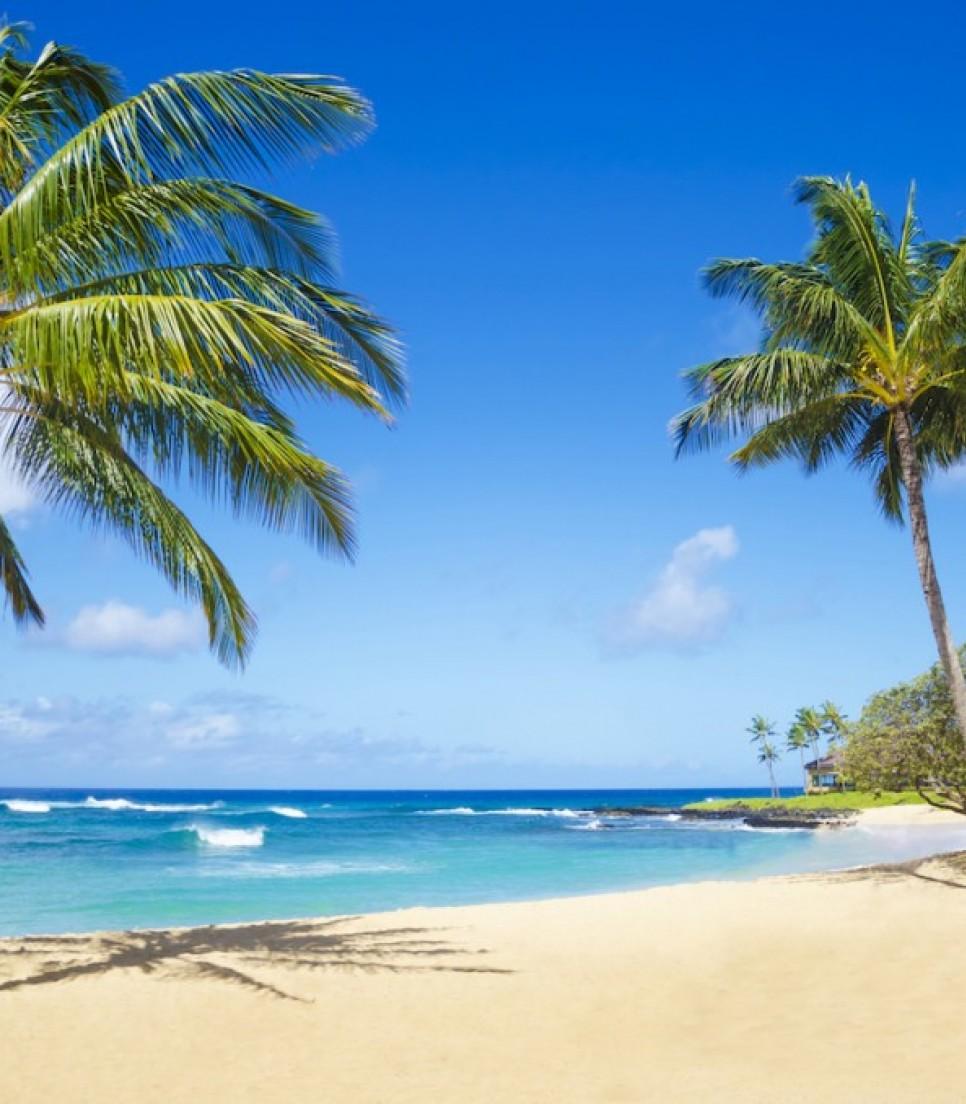 Hawaii al completo